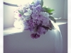 closeup_bouquet