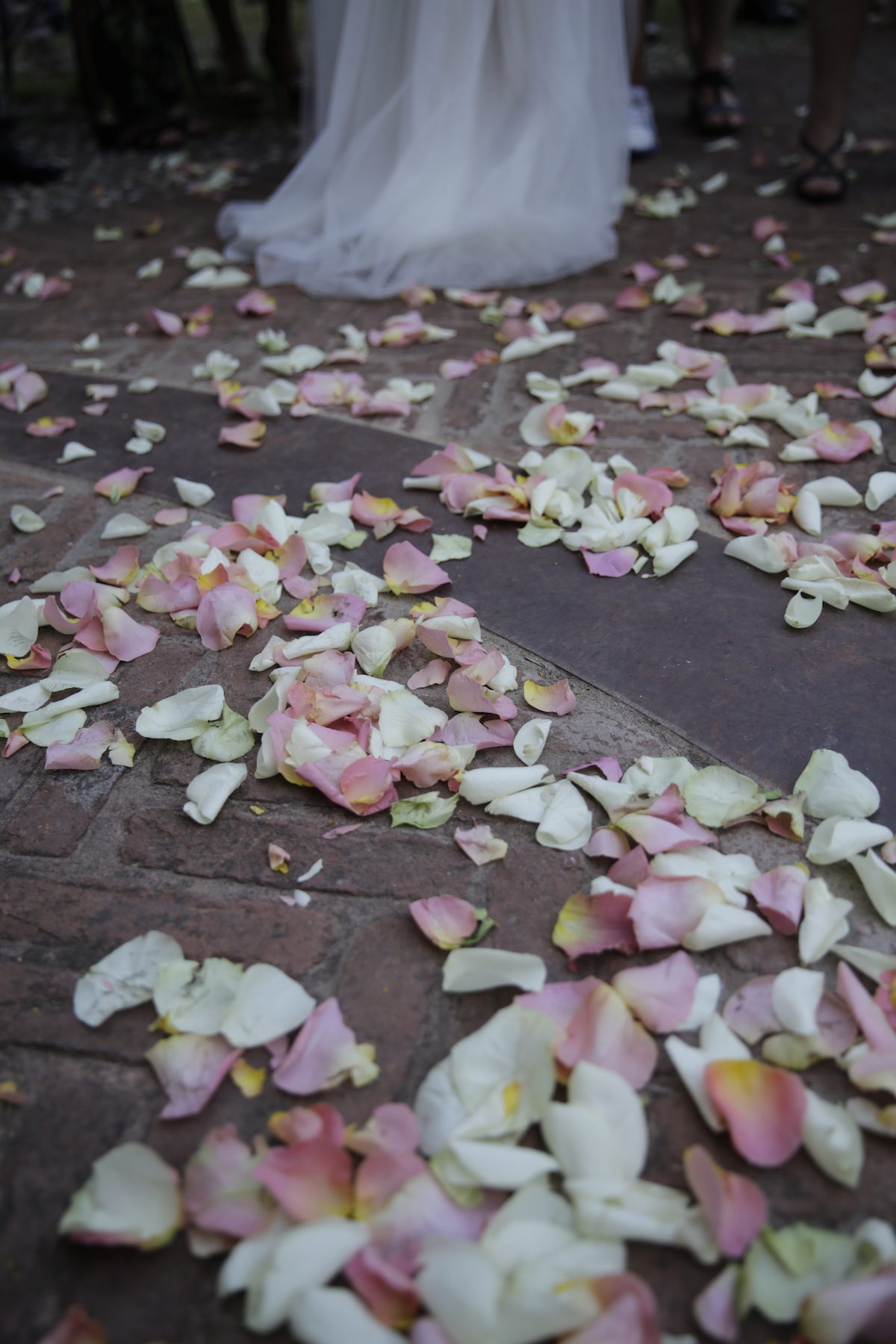 aa-petali-esterno-chiesa-01