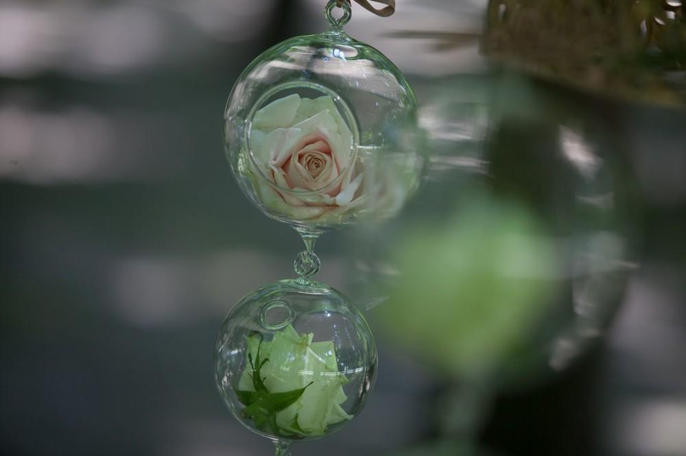 05-fiori-nel-bosco-convento-annunciata